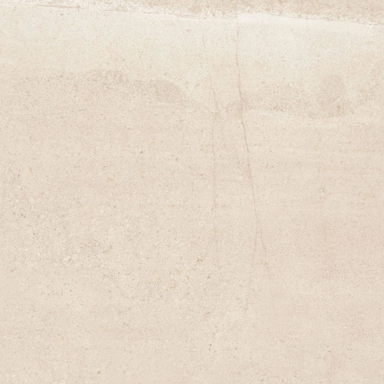 arenaria bege na