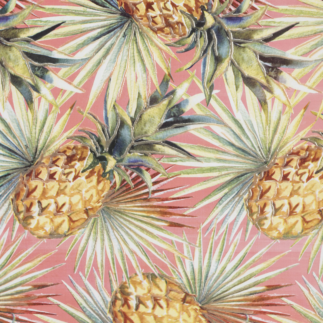 patch tropical